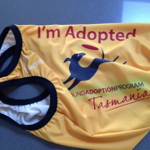 im-adopted-vest-1024x768